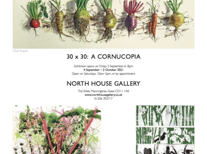 Poster for the 30 x 30 exhibition featuring three artworks and invitation text