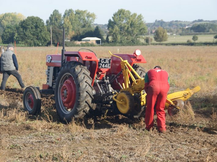 A man in red overalls fixing a plough attached to a Massey Ferguson 165 tractor.